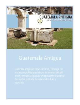 Gatemala Antigua 19 en grano Doypack 250g