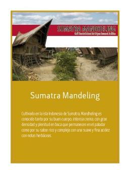 Sumatra Mandheling en grano Doypack 250g